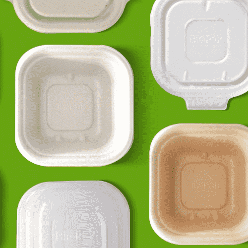 SUGARCANE SQUARE TAKEAWAY CONTAINERS